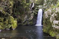 Pequeno paraiso 13 (Felipe Ogando) Tags: naturaleza rios sedas felipeogando morfeofilms