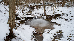20160212_DSC0664 (Todd Plunkett) Tags: ohio usa snow water weather river waterfall unitedstates parks clearcreektownship patriciaallynpark