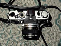 Olympus OM-1 / Zuiko Auto-Macro 50:3.5 (Dennicia) Tags: film analog olympus zuiko om1 5035 automacro