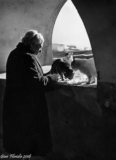 Camogli, 1963: La vecchina dei gatti