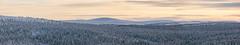 peachy (Cano Vääri) Tags: trees winter panorama snow nature forest finland landscape inari outdoor dusk north arctic lapland fi saariselkä fell lappi 2016 wildland
