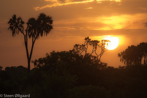 Sunset at Kilwa Dreams