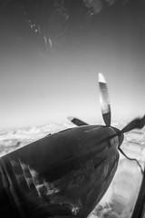 Shark (Elmo Flem) Tags: sky blackandwhite bw black fly noir noiretblanc ciel vol avion hlice blackwhitephotos fujipro blancblack fujixpro fujixpro1 imagezeroimage6x6noir