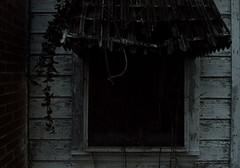 DSC_8949-1 (Cinderthorn) Tags: abandoned window rural dark vines decay haunted explore urbex rurex