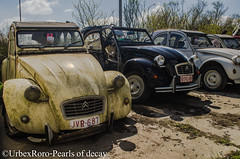 """I wonder if ducks do the human face"". (rondelezromario) Tags: urban cars abandoned nikon citroen urbex followme cv2 d7000 follow4follow"