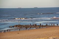 Toen het nog kaud was (LadyLove1967) Tags: strand bevroren wandelen zee bloemen ijs mensen koud vriezen