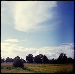 ' (Ulla M.) Tags: sky 6x6 clouds fuji himmel wolken dorsten freihand pentaconsixtl mittelformat canoscan8800f