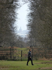 St Paul's Cathedral from Richmond Park, London, England, Easter Sunday 2016 (PaChambers) Tags: park uk morning urban southwest west london st rural easter paul europe cathedral south country sunday royal parks pauls richmond deer 2016 patk tural