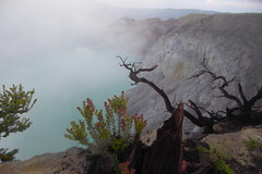 Looking down on the crater lake (gecgab) Tags: ijen
