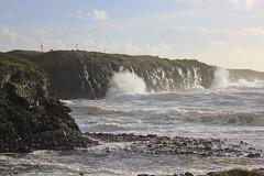 IMG_8342 (DaveGifford) Tags: ireland spanishpoint wildatlanticway