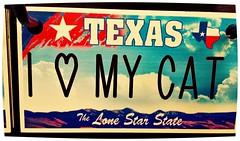 Truck Stop Treasures (Dave* Seven One) Tags: cat texas tx truckstop ilovemycat trinket truckstoptreasures