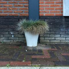 Waterdonken_Artstudio23_019 (Dutch Design Photography) Tags: new architecture fotografie natuur workshop breda blauwe miksang wijk zien huizen luchten uur hollandse fotogroep waterdonken
