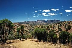 Flinders Ranges (Stefan Ulrich Fischer) Tags: travel nature 35mm landscape nationalpark outdoor oz australia outback analogue southaustralia downunder kodakektachrome minoltaxd7
