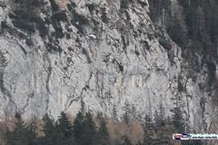 waldbrand_biwi_004 (bayernwelle) Tags: radio bayern berchtesgaden rettung feuerwehr hubschrauber untersberg waldbrand bergwacht einsatz lschen bischofswiesen winkl bayernwelle hallturm