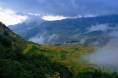 View of fields early in the morning, Yunnan (adamba100) Tags: life china trip travel light boy portrait sky people woman cloud mountain plant man color colour cute male men tourism lamp girl beautiful beauty face field grass female children landscape asian person star canal kid interesting women asia pretty vietnamese child play view outdoor hill innocent sightseeing chinese decoration beijing lifestyle style charm korea headshot tourist vietnam ridge mongolia korean human thai innocence mountainside lantern gadget grassland pure plain channel pendant foothill purity mongolian
