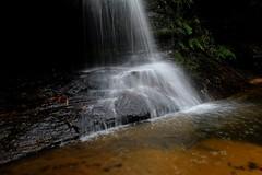 Pool of Siloam (Serge W) Tags: bluemountains leura poolofsiloam