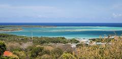 Buccoo Reef (LifeLover4) Tags: island turquoise caribbean tt reef pigeonpoint tobago mpa westindies ramsar
