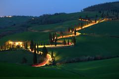 cypress alley (judith.kuhn) Tags: light alley long exposure darkness time traces tuscany cypress allee toskana dunkelheit langzeitbelichtung zypressen lichtspuren montichiello