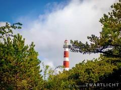 Lighthouse on Ameland (uiltje) Tags: sky lighthouse nature waddenzee bomen natuur ameland lucht vuurtoren waddeneilanden iphonegraphy