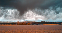 and then the rains came - Infrared (eDDie_TK) Tags: ir colorado co infrared berthoud frontrange weldcounty easternplains berthoudco coloradoseasternplains weldcountyco frontrangeco weldcntyco