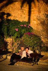 Palma de Mallorca, December 26, 2015 (Ulf Bodin) Tags: sunset bench swan spain outdoor sleep streetphotography siesta resting es palma spanien f12 urbanlife palmademallorca svan illesbalears bnk canonef85mmf12liiusm canoneos5dmarkiii