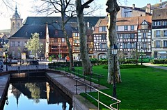 Colmar , Place de la Sinne  (1) (Philippe Haumesser Photographies) Tags: city trees houses france reflection tree water reflections river outside reflex nikon eau cathedral maisons rivire colmar cathdrale reflet arbres alsace arbre reflets ville elsass verdure 68 colombages 2016 hautrhin d7000 nikond7000