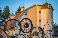 Sunrise at the Wheel Barn 2 (Theaterwiz) Tags: green barn sunrise washington goldenhour palouse thepalouse wheelbarn theaterwiz michaelcriswellphotography