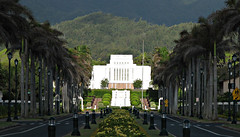 - Laie Hawaii Temple in the afternoon sun - (Jac Hardyy) Tags: light sun white house building church palms temple hawaii evening licht afternoon christ oahu jesus saints lord palm palmtree mormon palme gebude tempel holiness palmen mormonen weis latterday laie mormonentempel