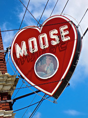 Moose, Irwin, PA (Robby Virus) Tags: sign neon order pennsylvania moose lodge signage fraternal irwin loom loyal