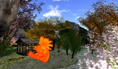 Meeting  the Angel Warrior (ReignShadow) Tags: angel forest stream dream peaceful secondlife warrior