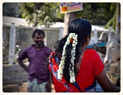 Flowers in Her Hair (The Spirit of the World) Tags: road street flowers woman india cow asia locals dress roadtrip streetscene busy hairstyle sari everydaylife crowded southernindia politicalposters
