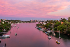 Pink Hour towards Sydney Harbour (satochappy) Tags: pink sunset river sydney nsw newsouthwales  sydneyharbour gladesville   parramattariver