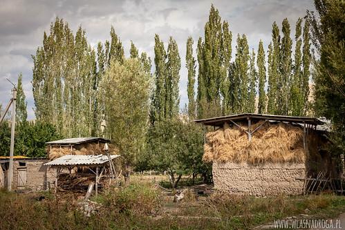 Kirgiska wieś