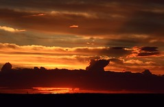 Almost Gone [explore] (PelicanPete) Tags: sunset red sky orange usa cloud black nature beauty silhouette landscape gold interesting colorful unitedstates florida outdoor dusk horizon dramatic explore serene rays elevated hazy cloudcover overhead dike cloudscape almostgone floridaeverglades southflorida lookingwest browardcounty 412 explored sawgrassexpressway dikeroad exp305 diamondclassphotographer flickrdiamond hometownsunset 112015 coralspringsflorida dmslair artisticsunsetphotography fallautumn2015 quartasunset308 bestposition41211316