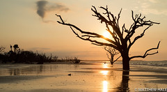 Morning Glory: Botany Bay, SC (Hale.M) Tags: sun beach nature water sunrise landscape photography nikon natural outdoor southcarolina charleston shore botanybay edisto naturephotography landscapephotography sunrisephotography nikond750