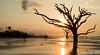 Morning Glory: Botany Bay, SC (Hale.M) Tags: sun beach nature water sunrise landscape photography nikon natural outdoor southcarolina charleston shore botanybay edisto naturephotography landscapephotography sunrisephotography nikond750