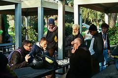 Incontro di scacchi (luigi_c135) Tags: park street people italy parco milan color analog italia kodak 10 milano chess olympus om10 sight om gaze analogic scacchi colorplus200