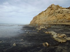 beach at Torrey Pines (h willome) Tags: ocean california torreypines sandiego erosion seacliffs torreypinesstatereserve 2016