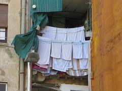 IMG_4452 (niesette_bax) Tags: laundry clotheslines