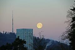 Setting Moon, Highrise and Broadcasting Tower (onurbwa51) Tags: moon switzerland mond antenne hochhaus winterthur sulzer broadcastingtower monduntergang etting 25jan2016