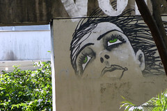 Brsil 2016 SP Graffitis-008 (CZNT Photos) Tags: streetart brasil saopaulo graff brsil artmural alaincouzinet cznt
