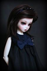 Dressing up (giddykipper/debra) Tags: may fairy tiny bjd msd ws bluefairy