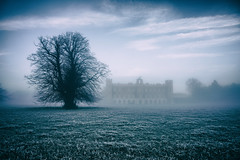 Syon House In The Mist (Simon & His Camera) Tags: winter sky mist building tree london grass fog architecture landscape outdoor horizon iconic middlesex brentford isleworth syon syonpark syonhouse syonhousepark simonandhiscamera