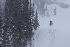 Storm day hoversledding (Jeff Bernhard) Tags: snowmobiling tetonpass