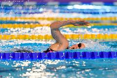 DSC_2061_290116_1824 (Kristiansand svmmeallianse) Tags: swimming swim skagerrak kristiansand ksa aquaram skagerrakswim2016