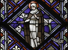 St Agatha (Lawrence OP) Tags: nyc saint lily cathedral knife saints stainedglass virgin martyr stpatricks agatha pliers