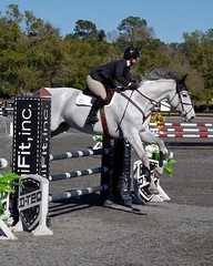 HITS 2016 1 (Photography & Website Design) Tags: horse competition hits jumpers ocala 2016