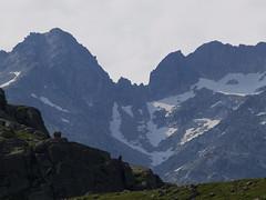 Widok na przełęcz Contraix