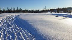 Bymarka, Trondheim (alexandre.lavrov) Tags: skiing trondheim bymarka trondhjem skistua
