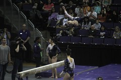 Allie Northey beam (5) (Susaluda) Tags: uw sports gold washington university purple huskies gymnastics dawgs